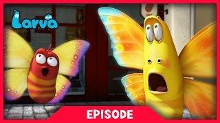 LARVA - WILD WILD WORLD | Cartoon Movie | Cartoons For Children | Larva Cartoon | LARVA Official