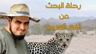 رحلة البحث عن النمر العربي جنوب المملكة العربية السعودية   الجزء الاول