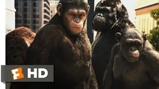 Rise of the Planet of the Apes (3/5) Movie CLIP - Attack on San Francisco (2011) HD
