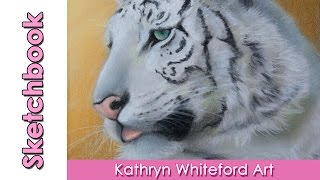 White Tiger Sketch Time Lapse Drawing - by Kat