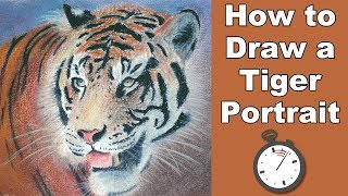 How to Draw a Tiger Portrait in Pastel Time Lapse