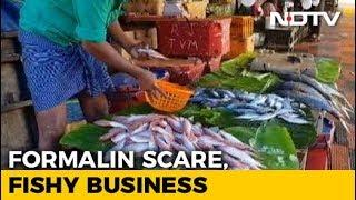 Formalin Scare Hits Fish Markets In Assam; Kerala, Northeast Cautious