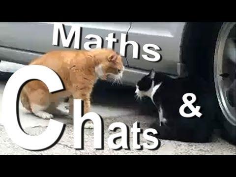 Xxx Mp4 MATH ET MATOU PAROLE DE CHAT 3gp Sex
