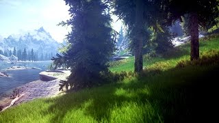 Skyrim Ultra Realistic Graphics (170 Mods) - 1080p 60fps