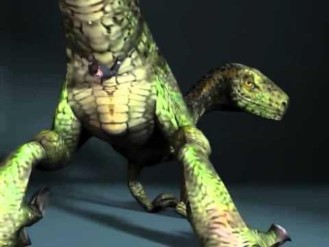 Xxx Mp4 Raptor Tail 3gp Sex