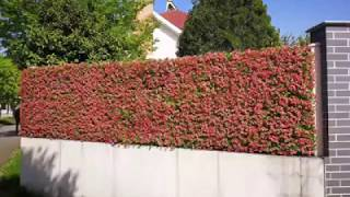 SUNWING artificial hedges screening to fit any fence or railings