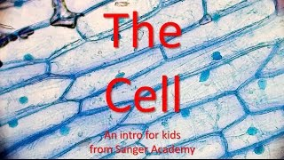 The Cell - an intro for kids - Sanger Academy
