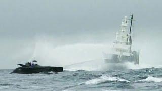 Whale Wars - Ady Gil gerammt!