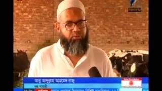 30 01 2017 Maasranga TV News Report