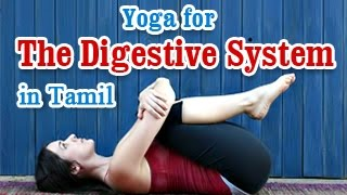 Yoga For Digestive System - Improve Digestive Disorders In Tamil