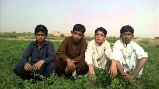 friends in surab