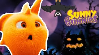 Halloween Cartoons for Children    Sunny Bunnies CELEBRATE HALLOWEEN   Funny Cartoons For Children