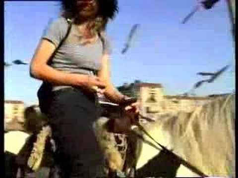 Xxx Mp4 Hottie Ride A Horse 3gp Sex
