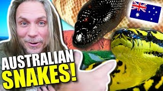 AUSTRALIAN SNAKES AND LIZARDS!!! **Lori sings FROZEN** Brian Barczyk