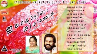 images Ilakozhiyum Shishirathil Dasettan Chitra M G Sreekumar Evergreen Hit Sad Songs Cinemapaattukal