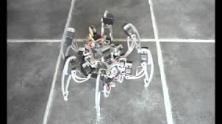 Hexapod Walking Robot V4b - micromagic systems (Higher quality)