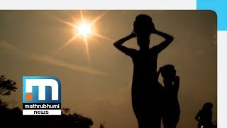 Summer Heat Sears Wayanad; Records 33 Degrees During Day| Mathrubhumi News