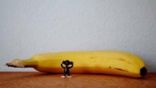 Cute Tiny Movies: Tiny Monkey: Stomach Ache