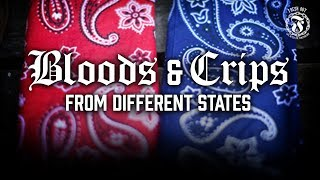 How are Bloods and Crips from other States looked at in Prison? - Prison Talk 12.22