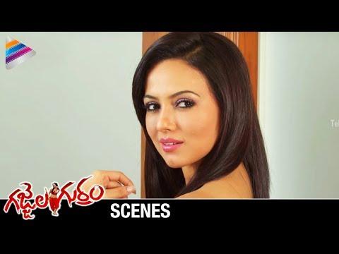 Gajjala Gurram Movie Scenes   Sana Khan   Suresh Krishna   Berny Ignatius   Telugu Filmnagar