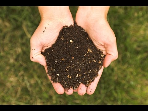 Compost, Manure and Fertiliser In Baatein Kheti Ki - On Green TV