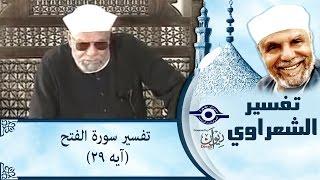 الشيخ الشعراوي | تفسير سورة الفتح (آيه ٢٩)