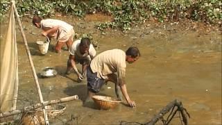 Bangladeshi Fishing 2014 - Part 3 Full HD