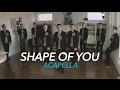 Download Video Ed Sheeran - Shape Of You [Acapella] 3GP MP4 FLV