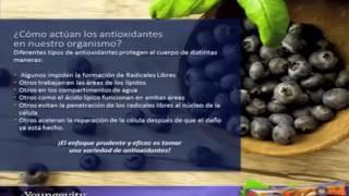 super saxi de youngevity un poderoso antioxidante