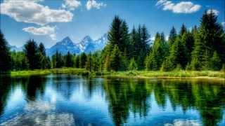 3 h Musique Relaxante | Nature | Forêt | Lac | Source | Chants des oiseaux | Relax'Action®