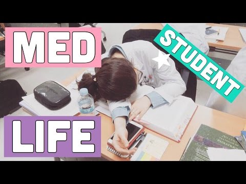 A DAY IN THE LIFE OF A MEDICAL STUDENT | MED SCHOOL STUDENT LIFE | twinklinglena