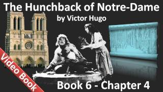 Book 06 - Chapter 4 - The Hunchback of Notre Dame by Victor Hugo - A Tear for a Drop of Water
