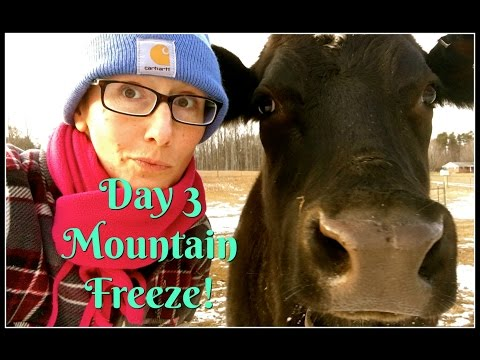 Day 3 of Mountain Freeze