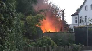 Sean's Kitchen Garden #264: LIVE FIRE ALERT! (Part 1 of 2)