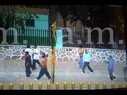 Graban campal en carretera León Silao