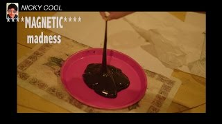 Create Your Own Magnetic Goo
