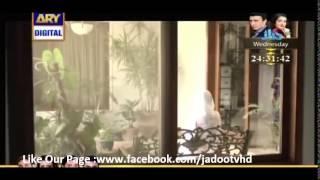 Chup Raho Episode 24 Ary Digital 10 February2015