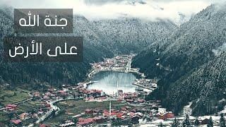 مدينة السعوديين في تركيا