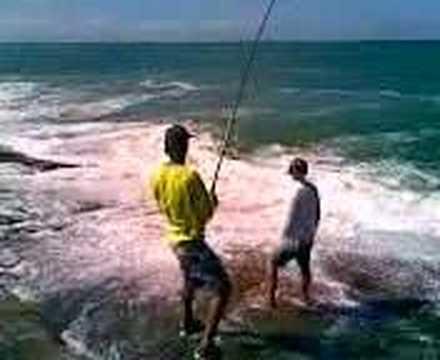 pescaria de pampo