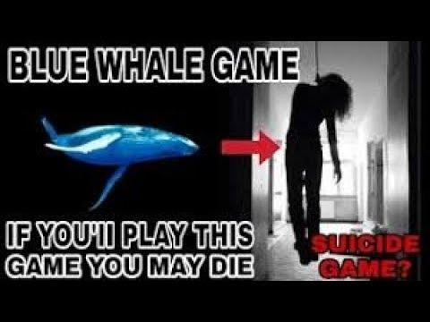 Xxx Mp4 Bluewhale 50 Challenge Mout Ka Game NJ 3gp Sex