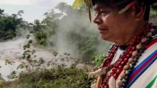 আমাজনে ফুটন্ত নদীর সন্ধান , মানুষ প্রানি যেই নামুক সাথে সাথে সিদ্ধ হয়ে যায় Reporter Shafique