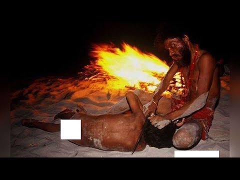 Xxx Mp4 Crazy And Fascinating Facts About Aghori Sadhus In India 3gp Sex