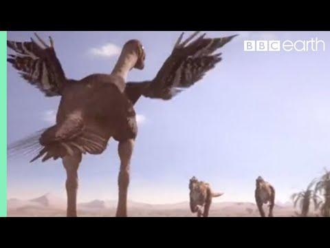 Oviraptorid fights to protect nest Planet Dinosaur BBC