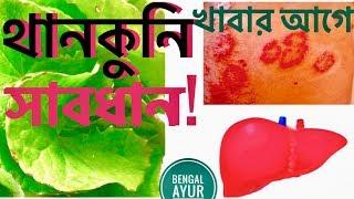 থানকুনি পাতার গুনাগুন | থানকুনি পাতার ক্ষতিকর দিক সমূহ | Thankuni Leaves Health Benefits In Bangla