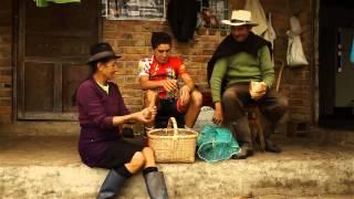 ¿Sabes por qué los mejores ciclistas de Colombia son campesinos...