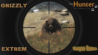The Hunter 2016 | Timbergold Trials | Grizzly Extrem | #7 | german Gameplay