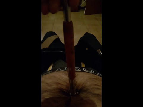 Xxx Mp4 My Navel Tortured With A Magnet And Coins 3gp Sex