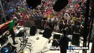John Scofield Uberjam performs