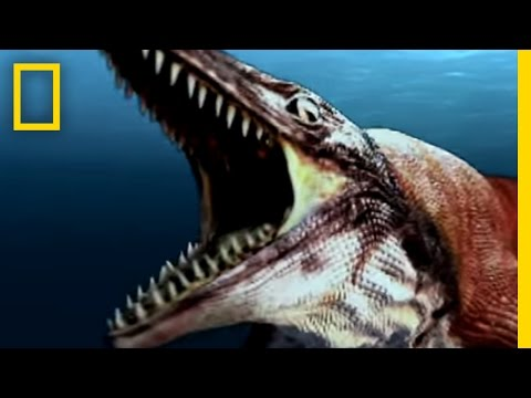 Sea Monsters 2 National Geographic