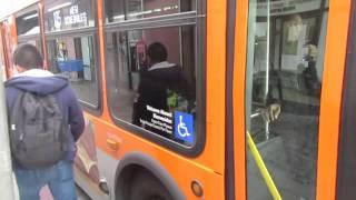 Metro Bus harassment